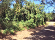 14 Colquohoun- Land for sale, St Croix USVI